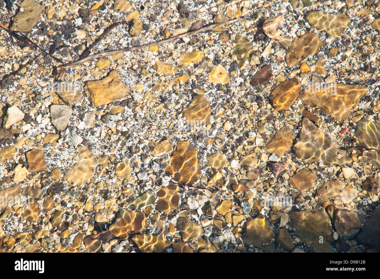 Fresh clear shallow water in an English Cotswold stream, with ripple patterned pebbles from dappled sunlight. - Stock Image