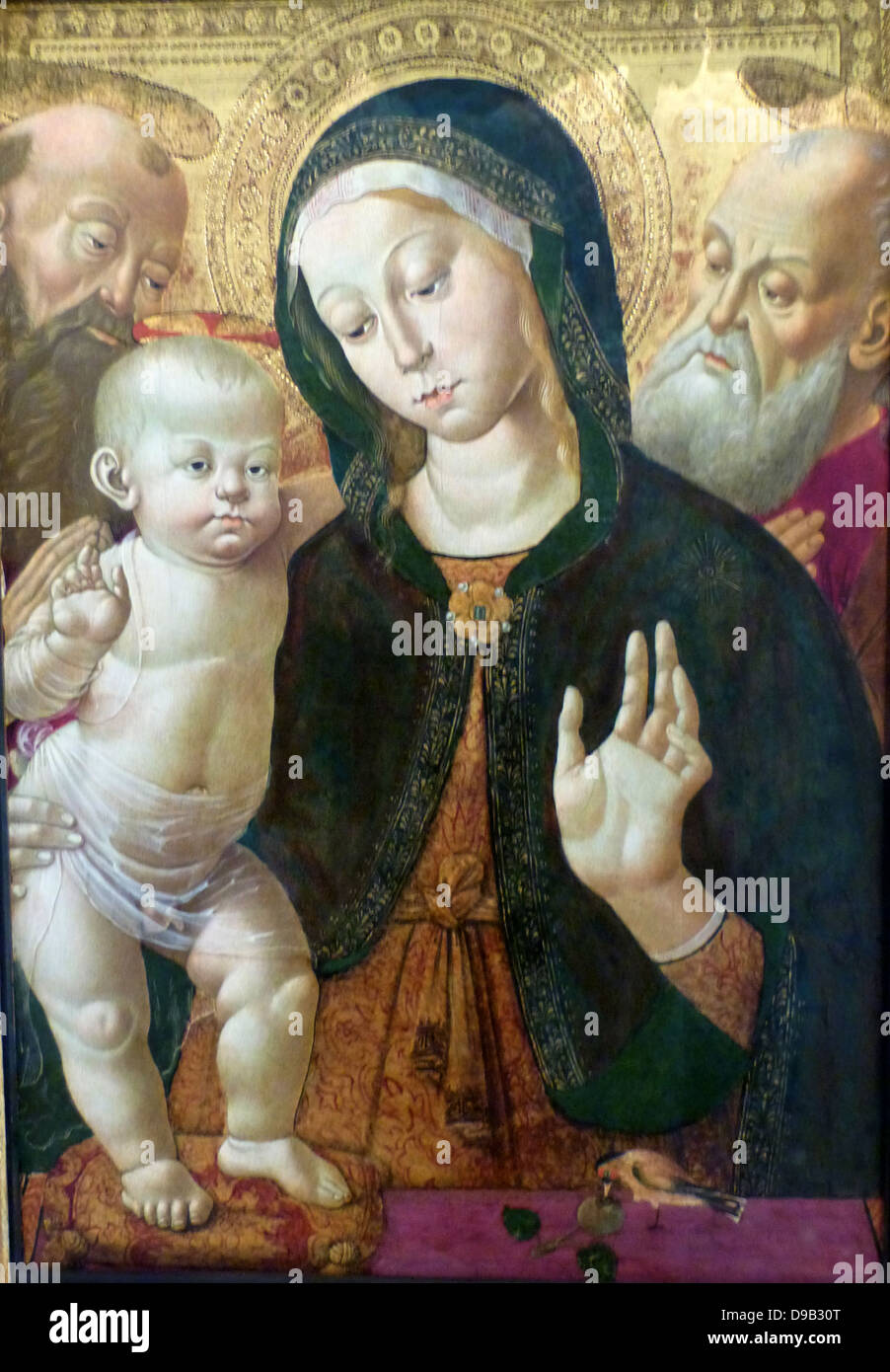 The Virgin and Child with two Saints about 1500. Oil on panel, Sienna, Italy.  Bernardino Fungai 1460-1516 approx. - Stock Image