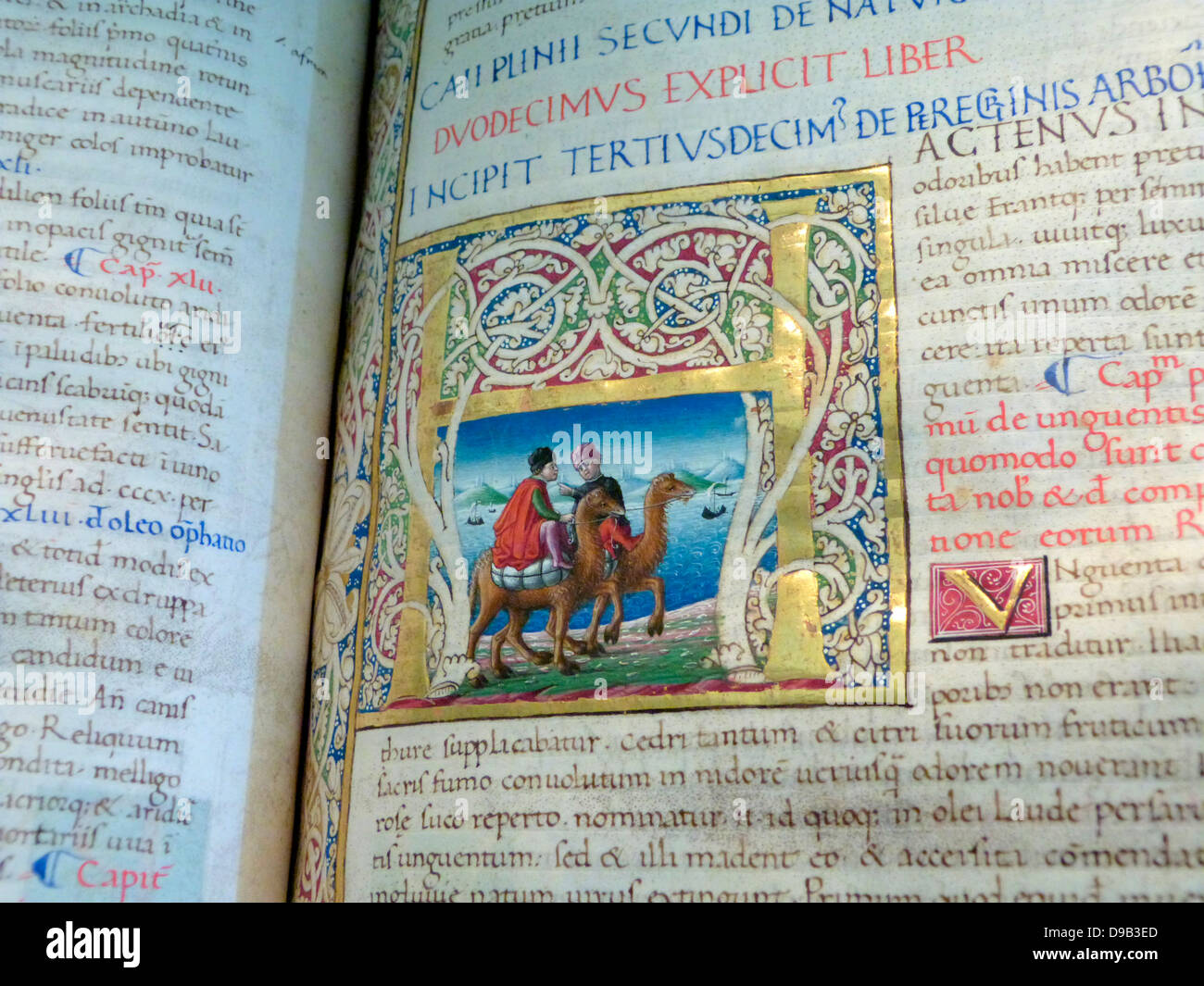 Natural History, the great encyclopaedia of the Roman writer Plimy the Elder, was written around AD77.  It became - Stock Image