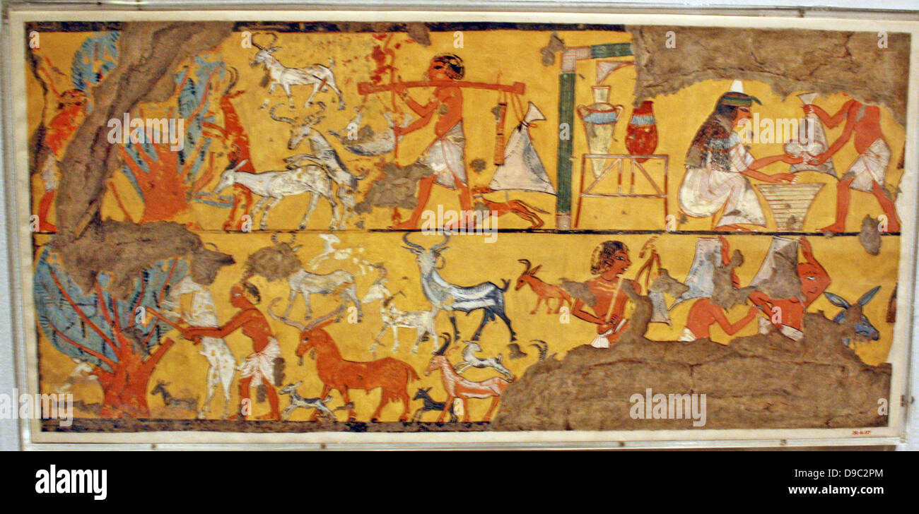 Egyptian Wall Paintings From The New Kingdom Stock Photos & Egyptian ...