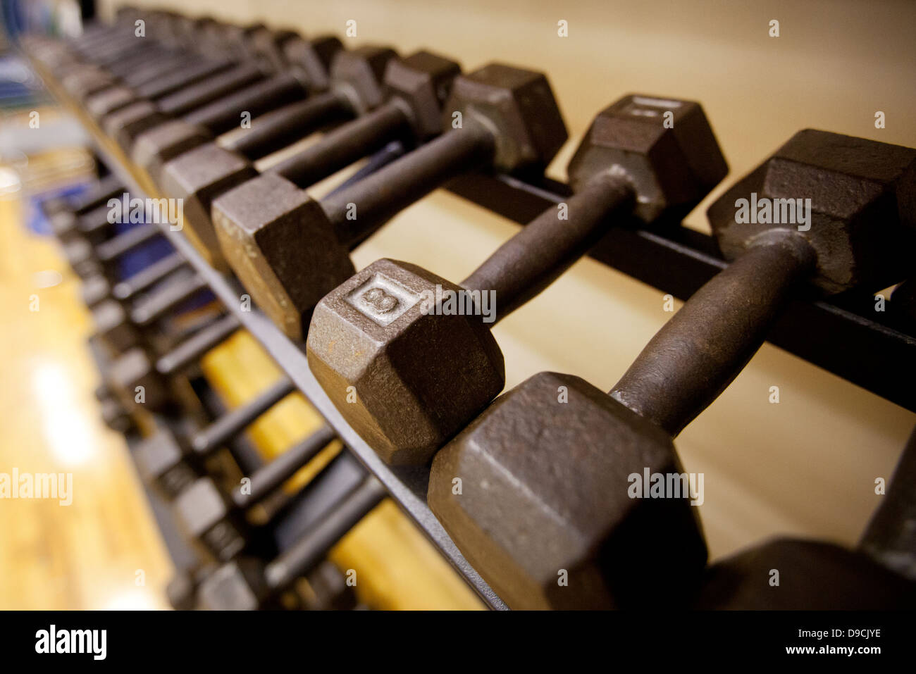 Iron dumbbell weights on a rack at a gym - Stock Image