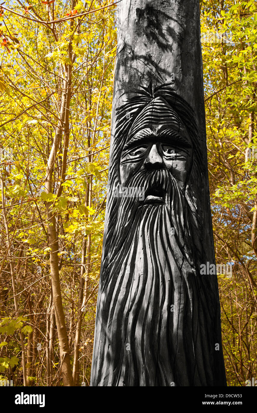 tree carving of old distressed man - Stock Image