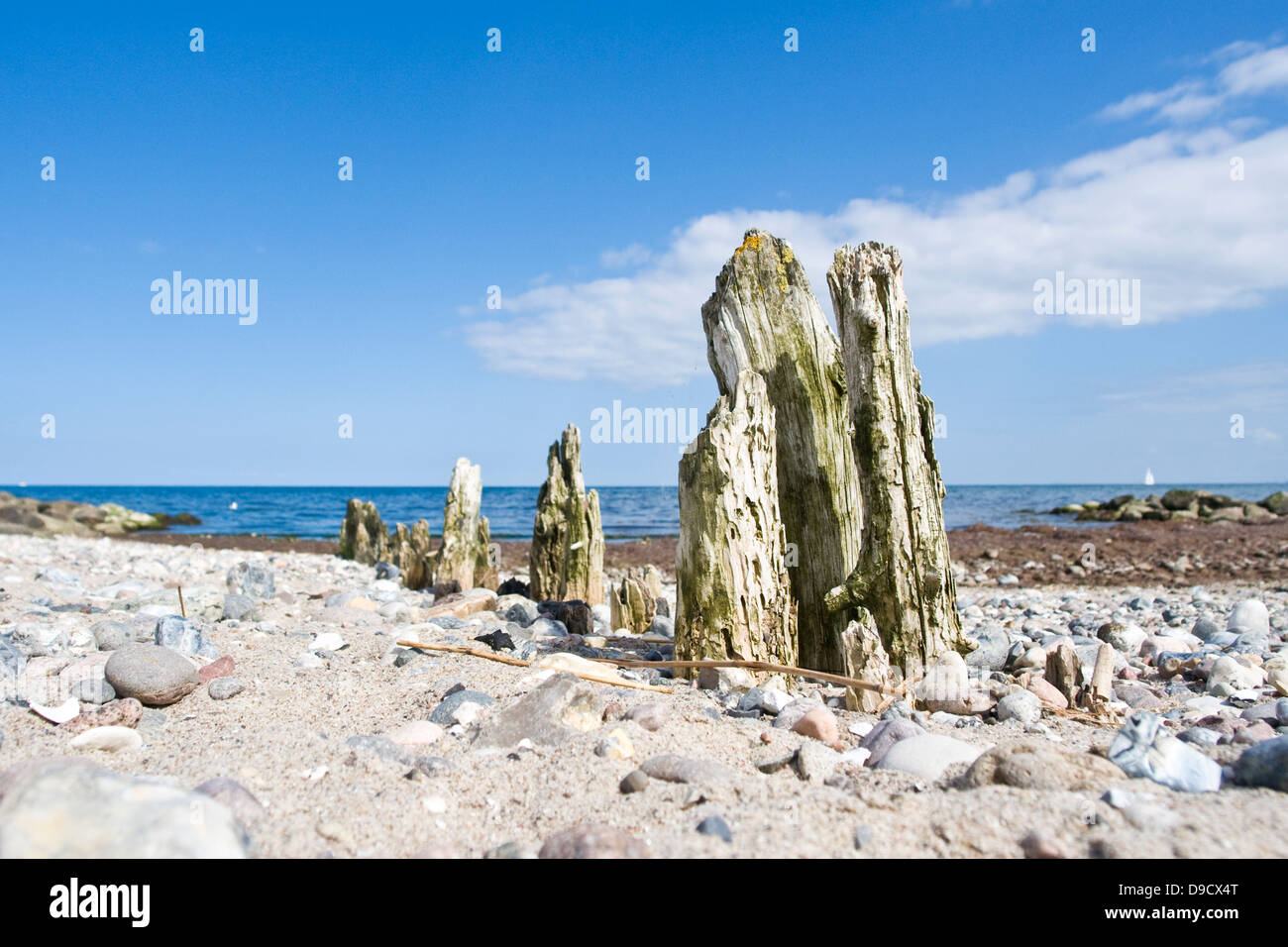 Old breakwaters on the Baltic Sea - Stock Image
