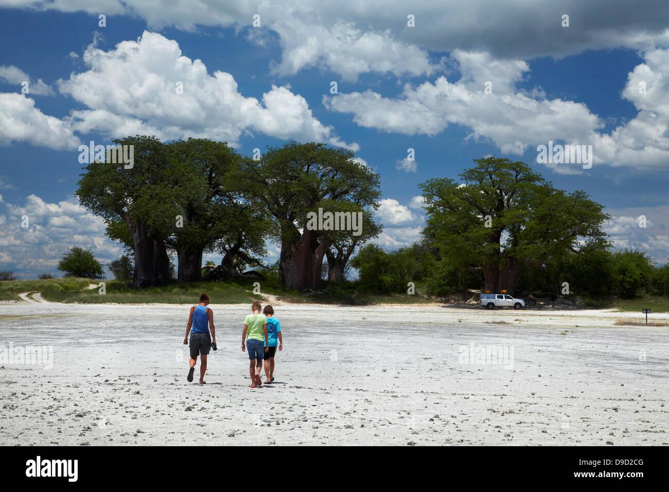 Tourists and Baines' Baobabs, Kudiakam Pan, Nxai Pan National Park, Botswana, Africa - Stock Image