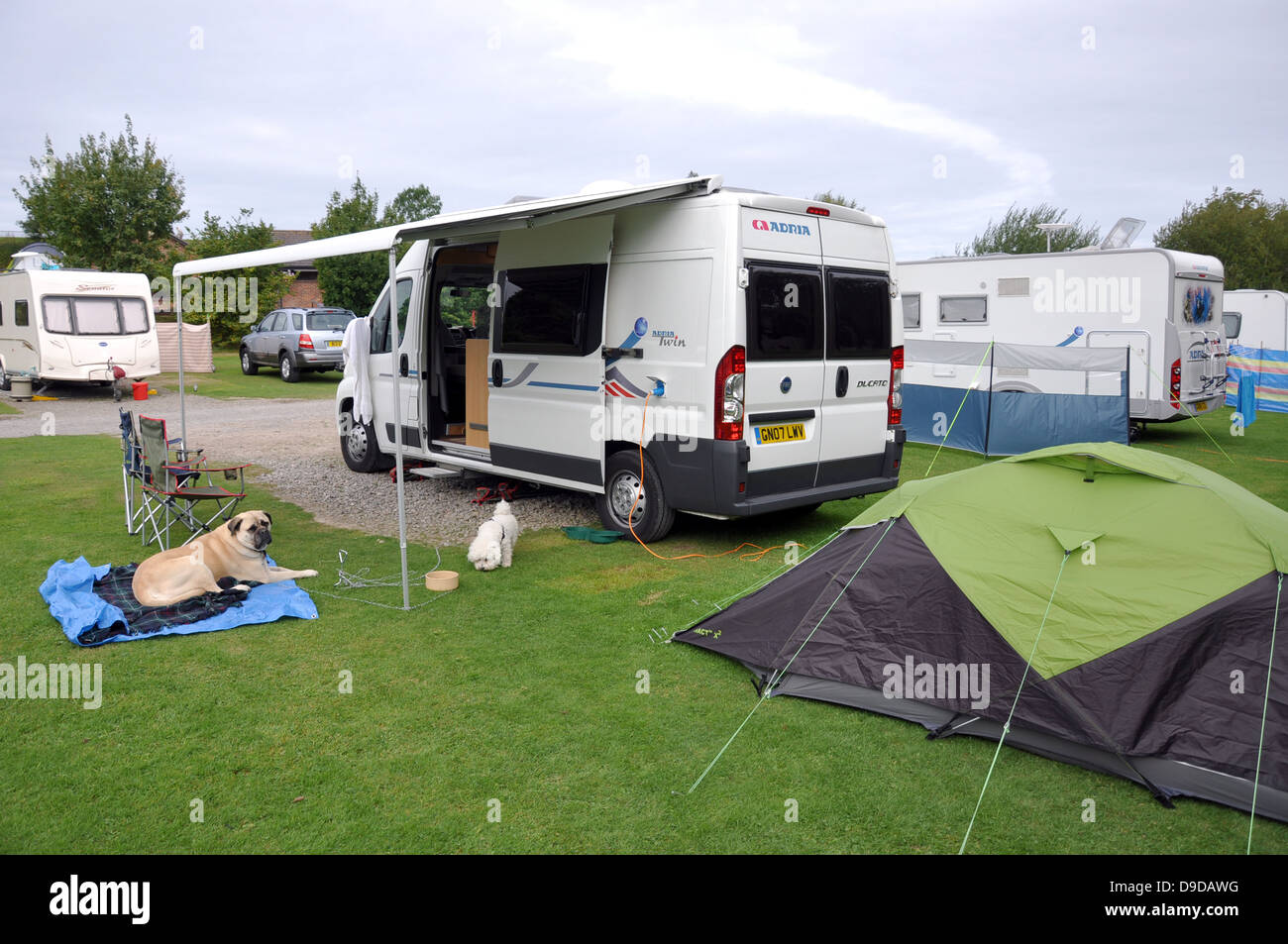 A motorhome, tent and dogs on their camping pitch in Sussex, England, UK. Caravans in the background. - Stock Image