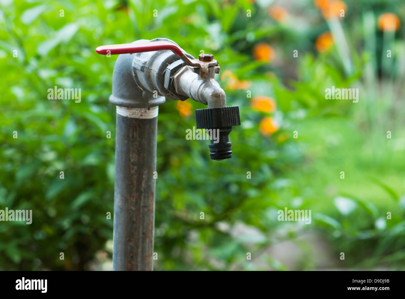 Wonderful Detail Of Old Garden Faucet.   Stock Image