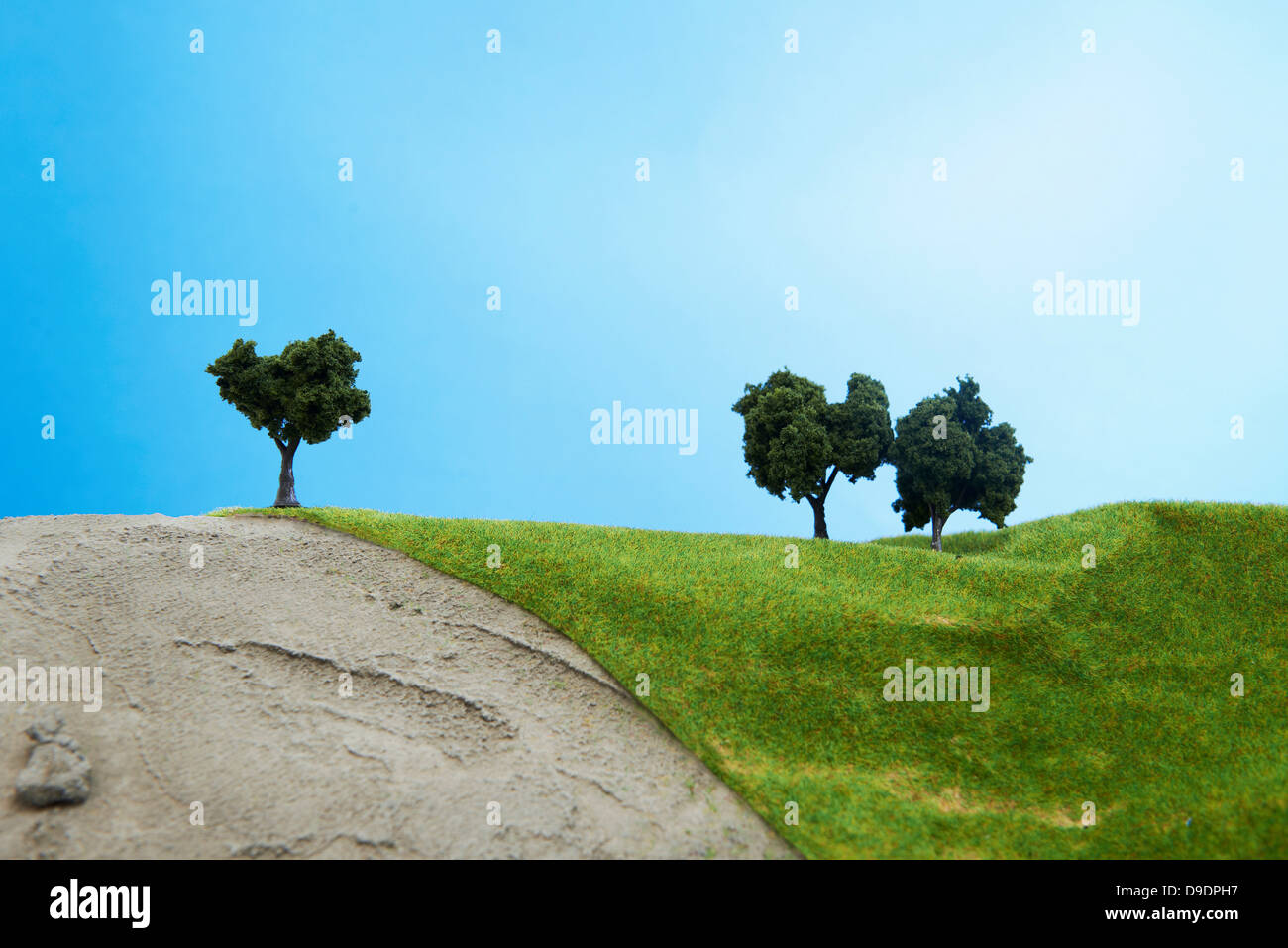 Model Trees Stock Photos & Model Trees Stock Images - Alamy