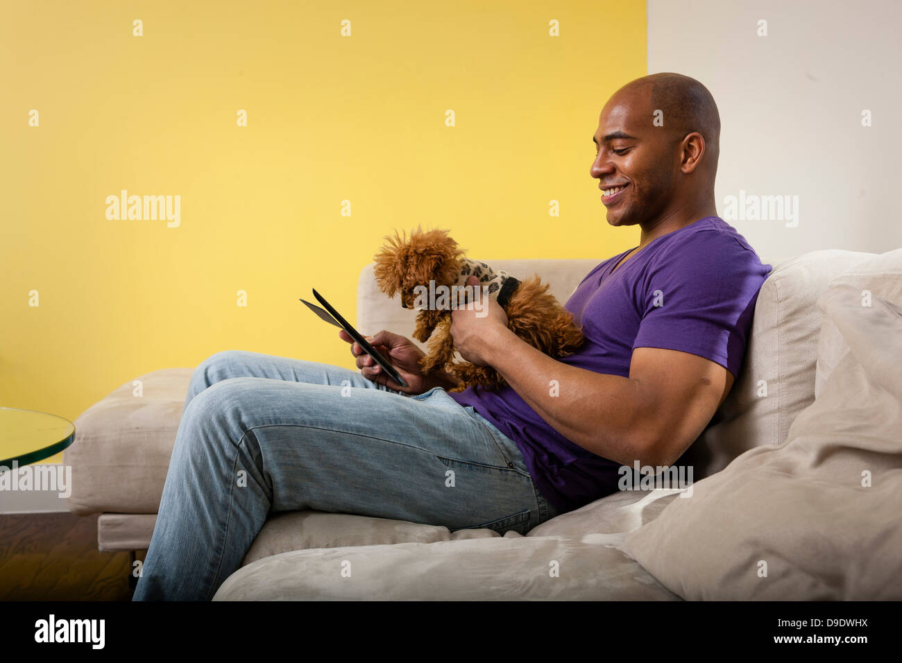 Mid adult male sitting on sofa with dog looking at digital tablet - Stock Image