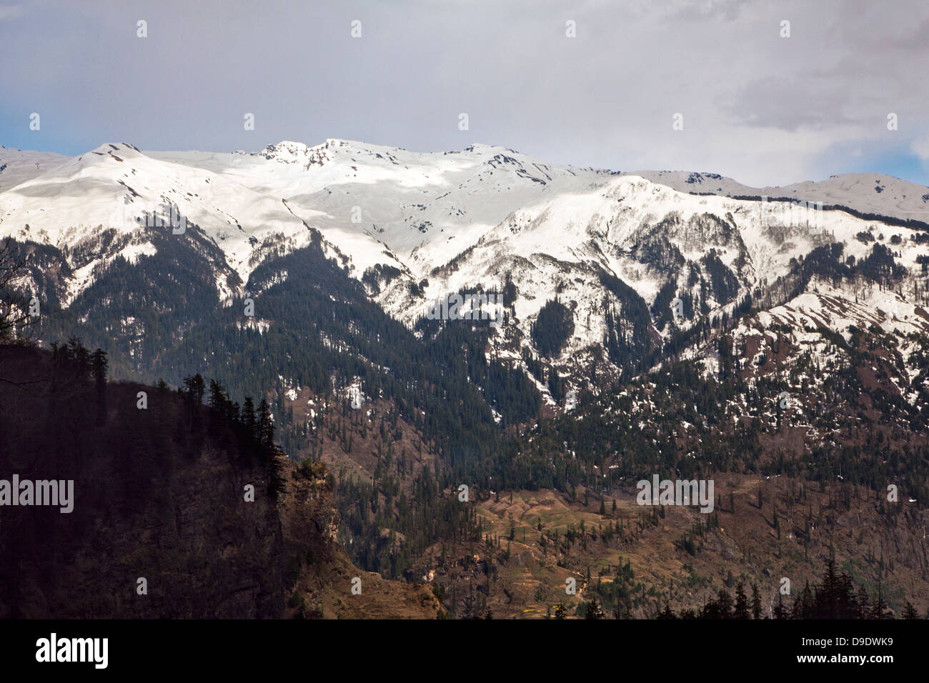 Snowcapped mountain mange, Manali, Himachal Pradesh, India - Stock Image