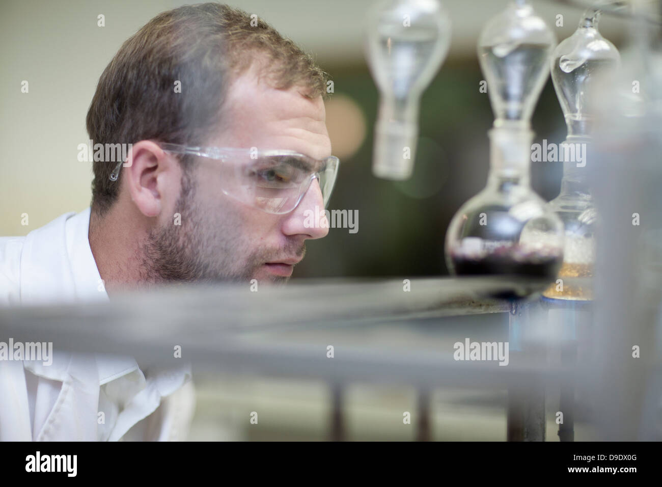 Oenologist monitoring sample testing in laboratory - Stock Image