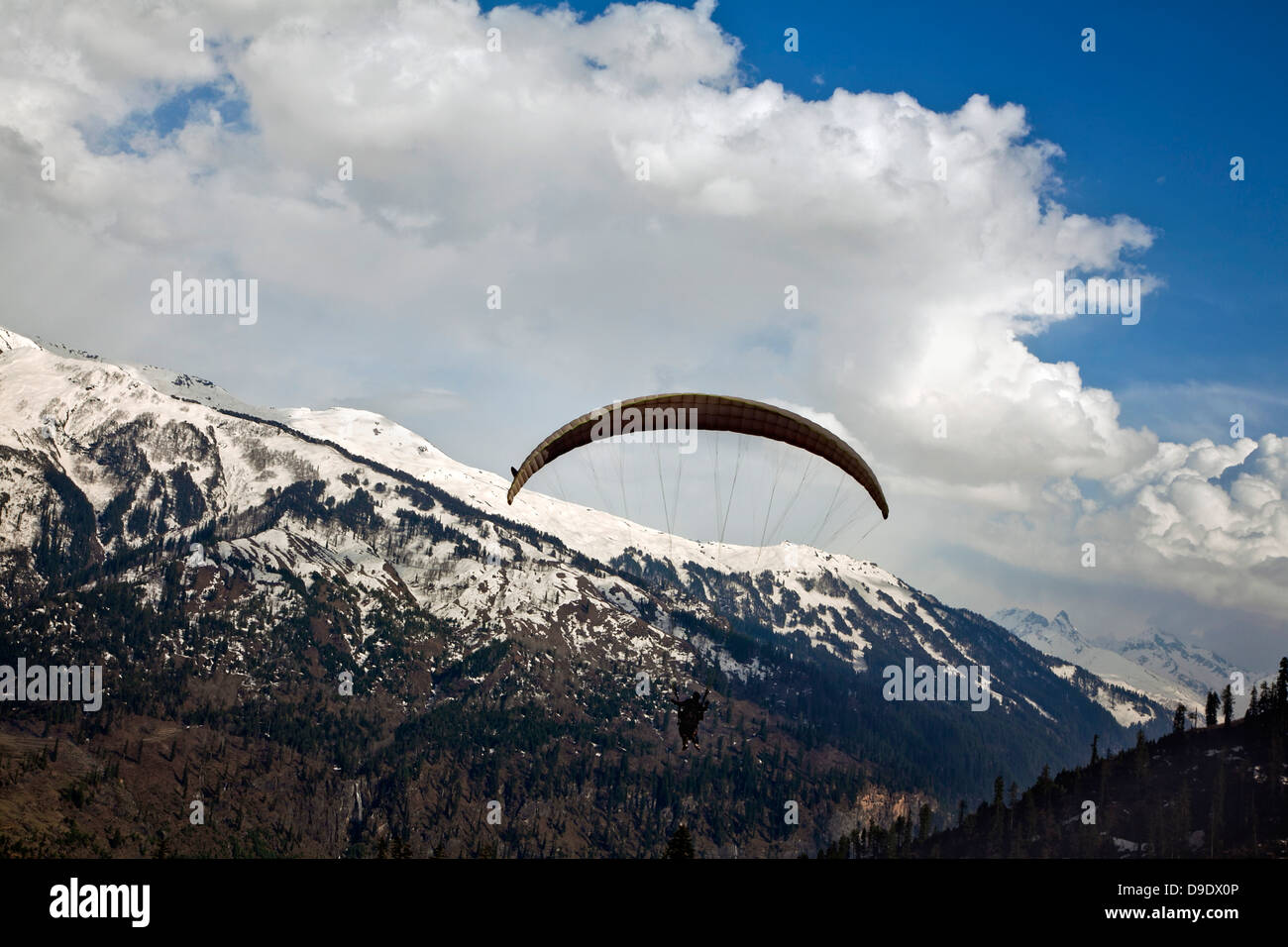 Paragliding over a valley, Manali, Himachal Pradesh, India - Stock Image
