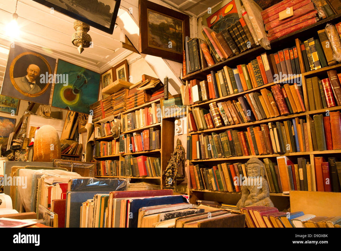Interiors of a library, Shimla, Himachal Pradesh, India - Stock Image