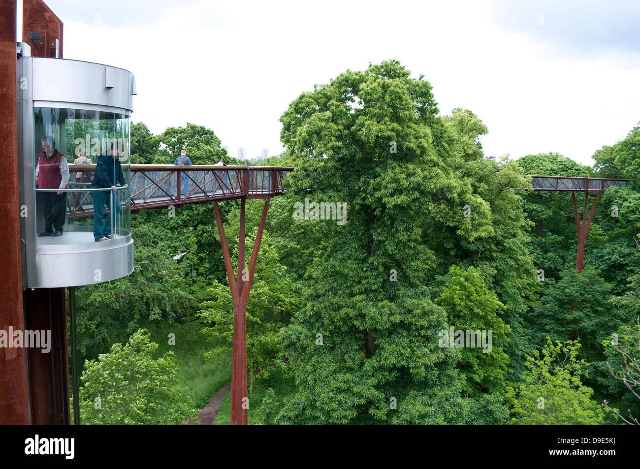 Xstrata Treetop Walkway, Kew Royal Botanic Gardens, London, UK - Stock Image
