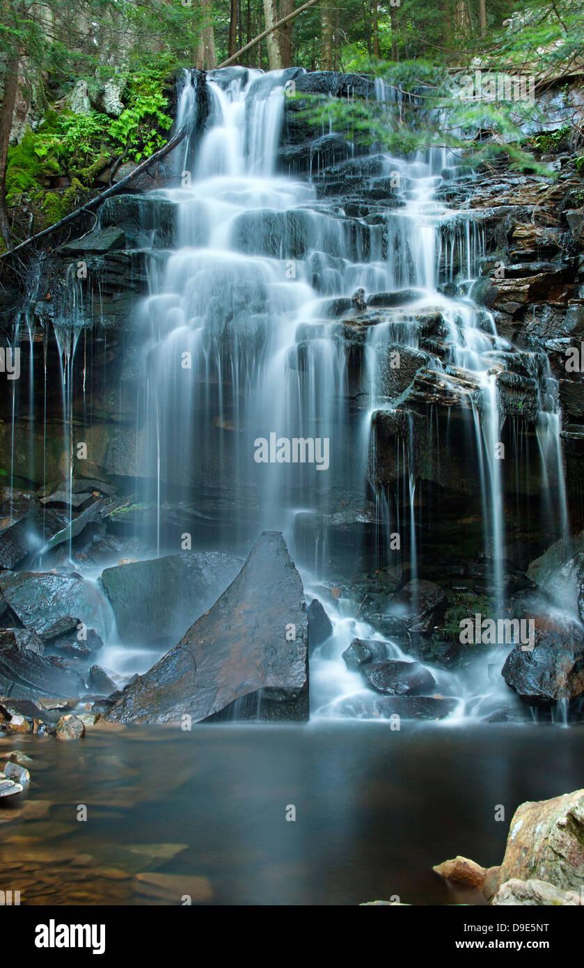 DUTCHMAN FALLS LOYALSOCK CREEK LOYALSOCK STATE FOREST SULLIVAN