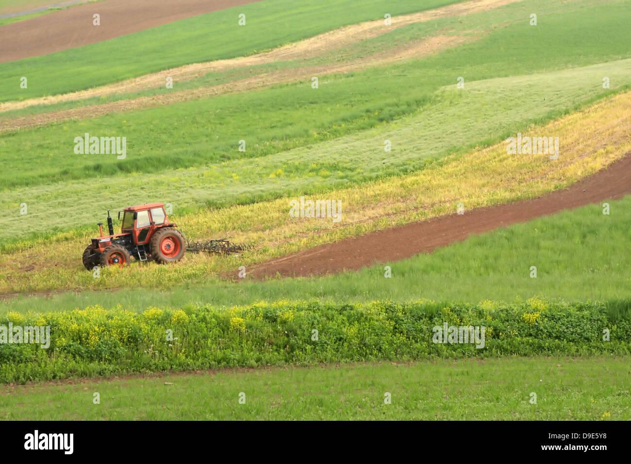 FARMER TRACTOR MORNING FOG BEECH CREEK, CLINTON COUNTY PENNSYLVANIA, USA SPRING FIELD PLANTING CROPS HAY CORN FARM - Stock Image