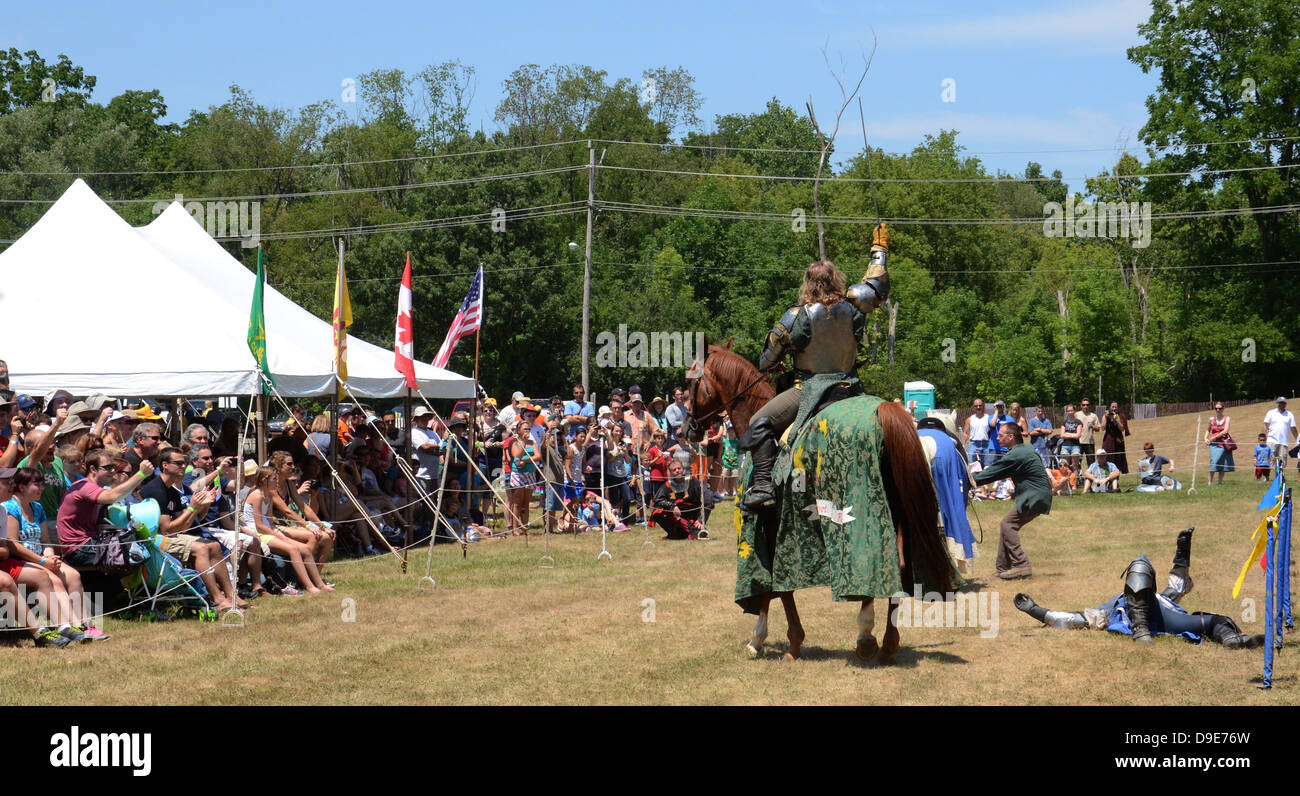 SALINE, MI - JULY 14: Victorious jouster acknowledges crowd at the Saline Celtic Festival July 14, 2012 in Saline, - Stock Image