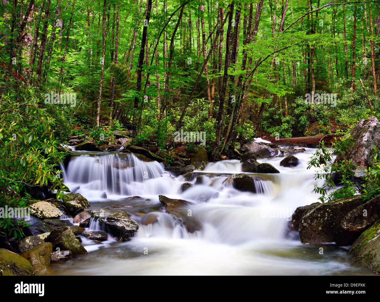 cascades in the Smoky Mountains of Tennessee, USA. - Stock Image