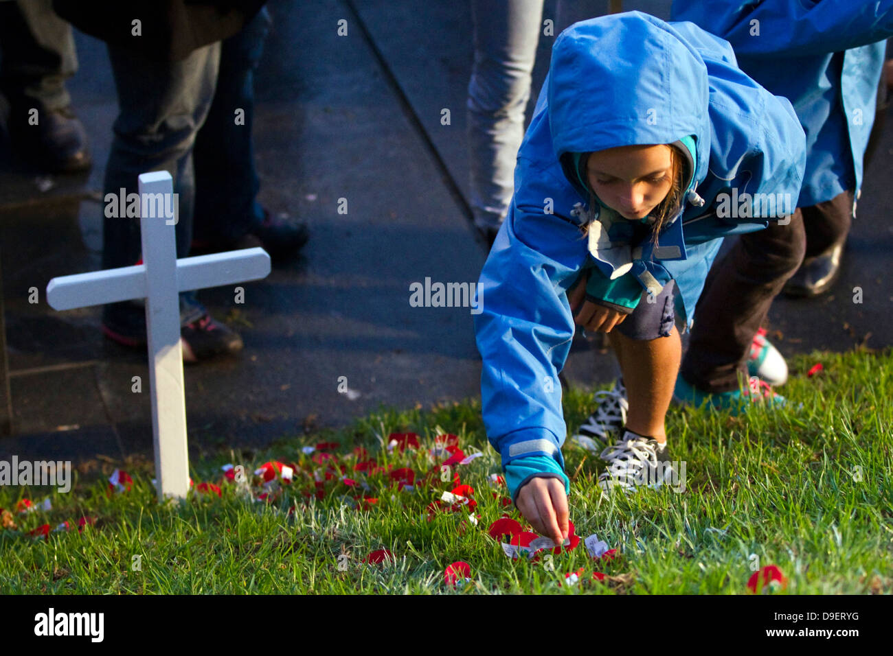A young girl lays a poppy in the Field of Remembrance at the Anzac Day Dawn Service, War Memorial Museum, Auckland, - Stock Image