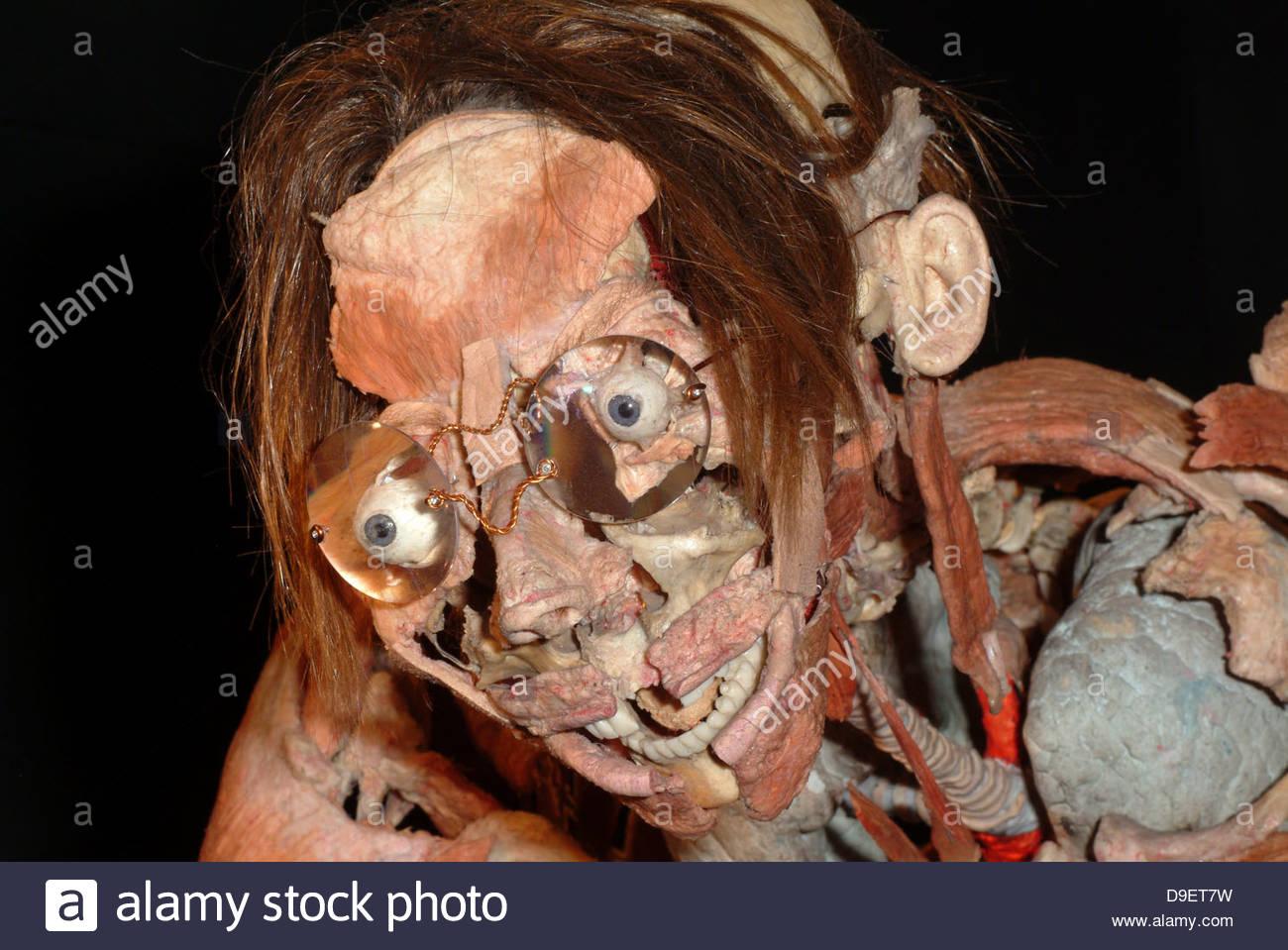 Anatomical Anatomy Artistic Artwork Autopsy Bodies Body Body Art Stock Photo Alamy