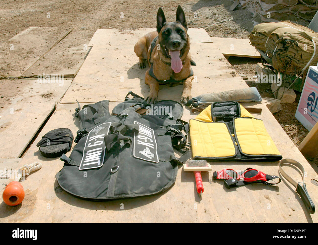 A military police dog sits beside his issued protective gear. - Stock Image