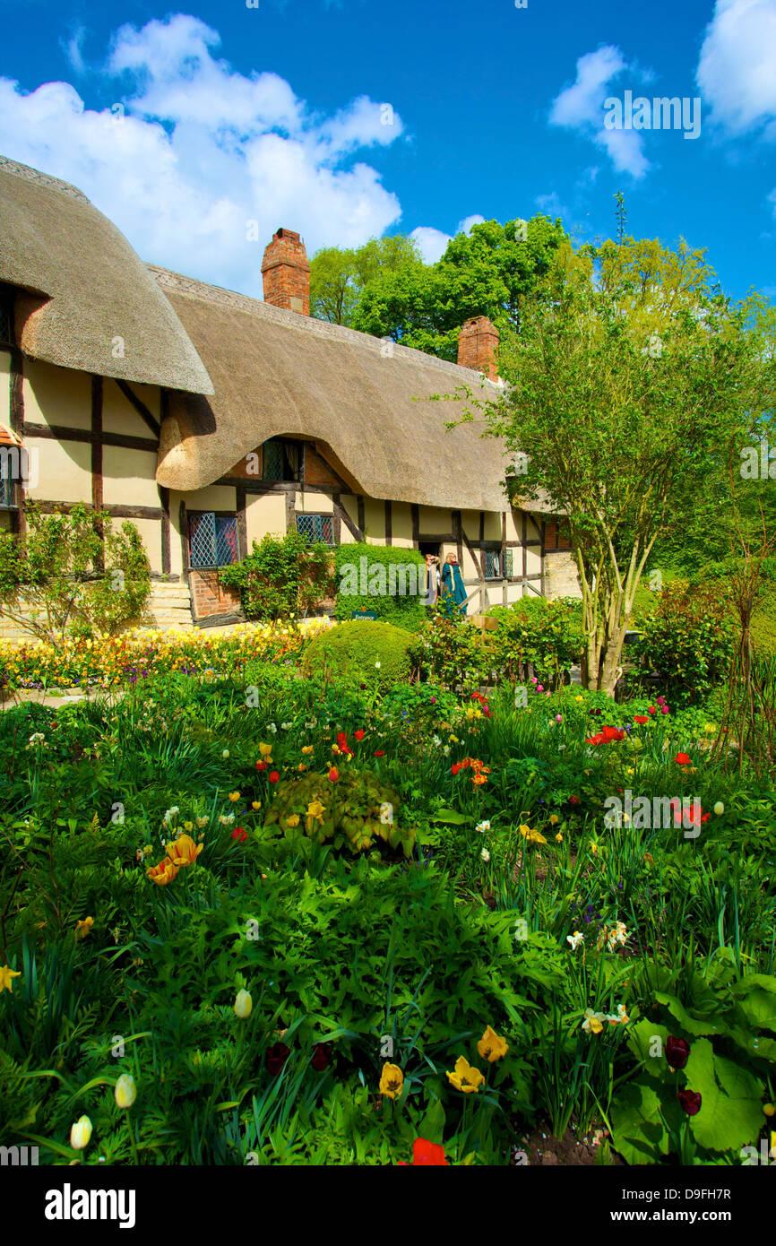 Anne Hathaway's Cottage, Shottery, Stratford upon Avon, Warwickshire, England, UK - Stock Image
