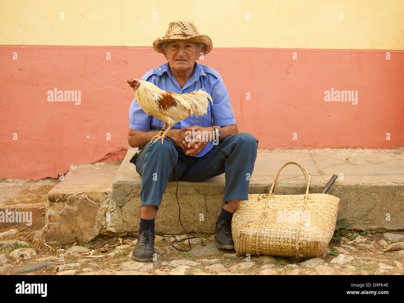 Local man wearing straw hat with cockerel standing on his knee, Trinidad, Cuba, West Indies - Stock Image
