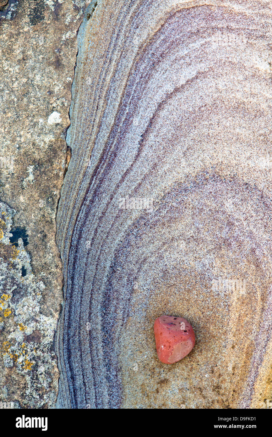 Patterns created by sea erosion on rocks at Rumbling Kern, near Howick, Alnwick, Northumberland, England, UK - Stock Image
