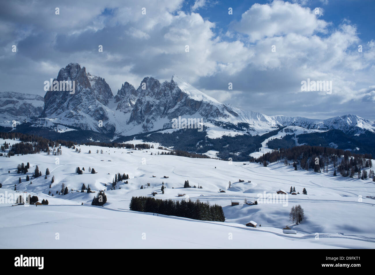 A snowy view of Sassolungo and Sassopiato Mountains behind the Alpe di Siusi ski area in the Dolomites, South Tyrol, - Stock Image