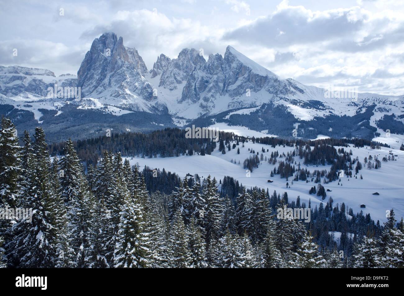 A snowy view of Sassolungo and Sassopiato Mountains behind the Alpe di Siusi ski area in the Dolomites, South Tyrol, - Stock Image