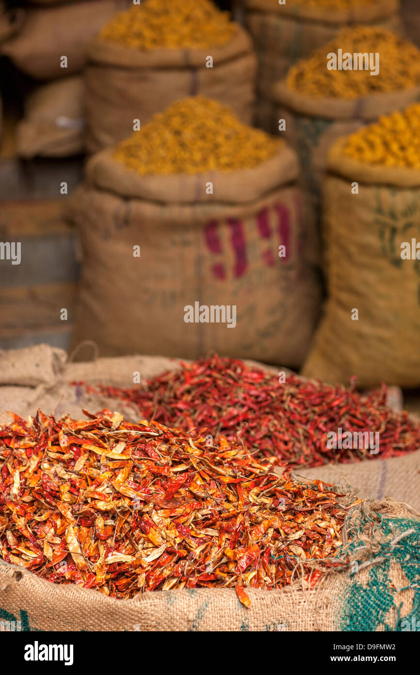 Sacks of chillies in a market, Delhi, India Stock Photo