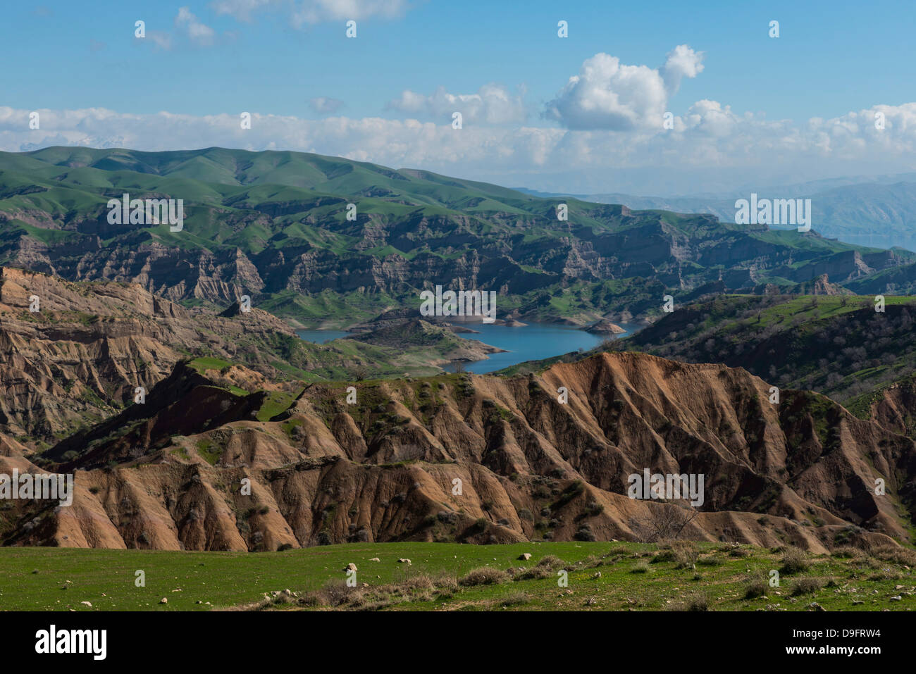 Green scenery around the Darbandikhan artificial lake on the border of Iran, Iraq Kurdistan, Iraq, Middle East - Stock Image