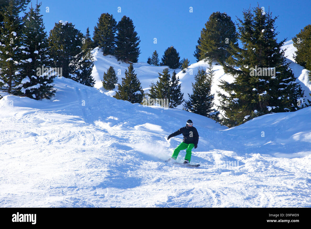Snow-boarding off-piste early morning in winter, La Plagne, French Alps, France - Stock Image