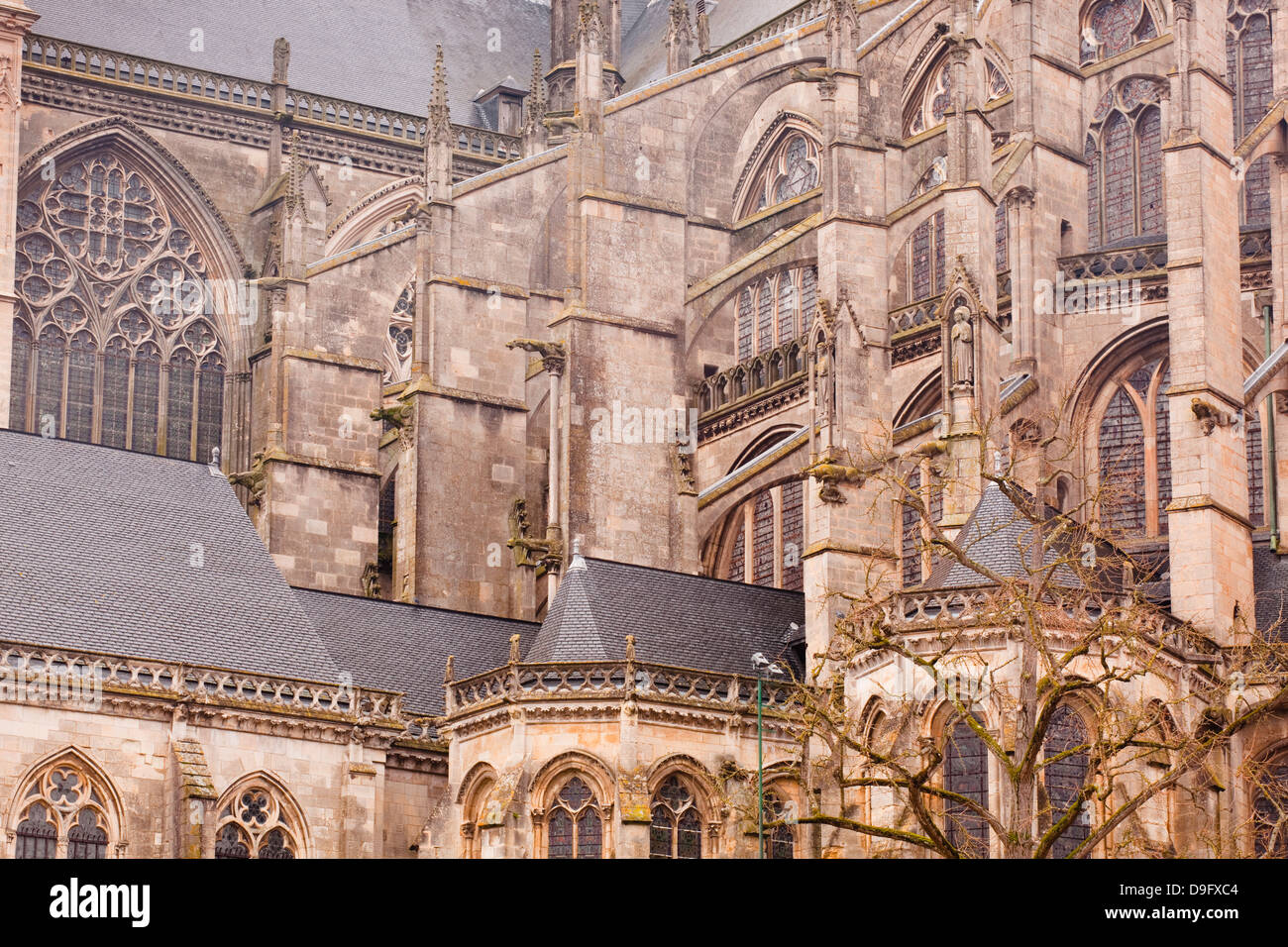 Flying Buttresses On St Julien Du Mans Cathedral Le Sarthe