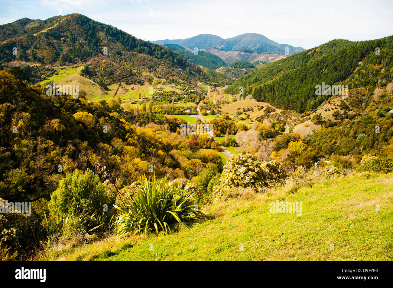 Landscape taken from the centre of New Zealand, Nelson Hill, Nelson, South Island, New Zealand - Stock Image