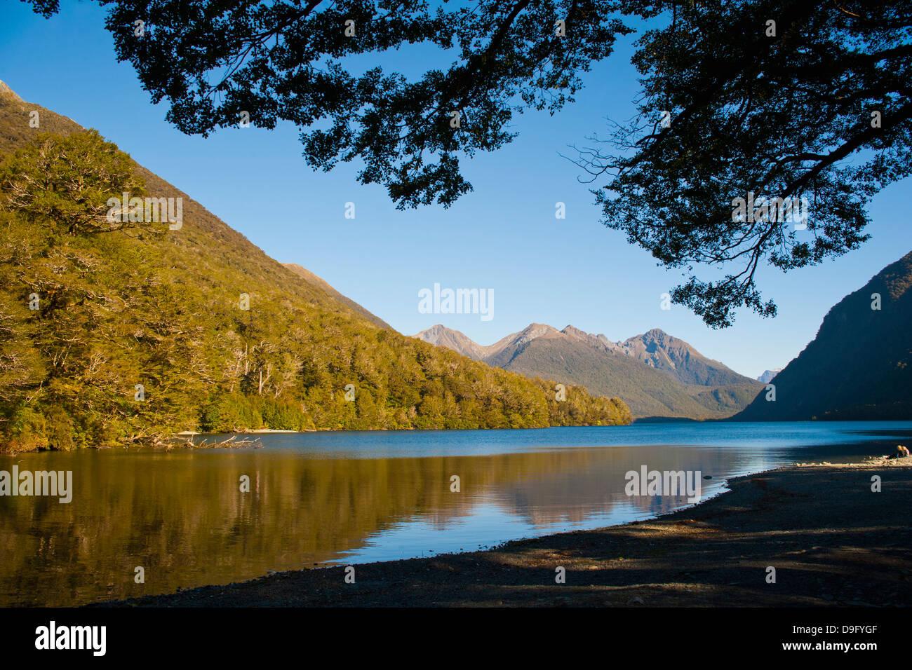 Lake Gunn mountain reflections, Fiordland National Park, UNESCO World Heritage Site, South Island, New Zealand - Stock Image