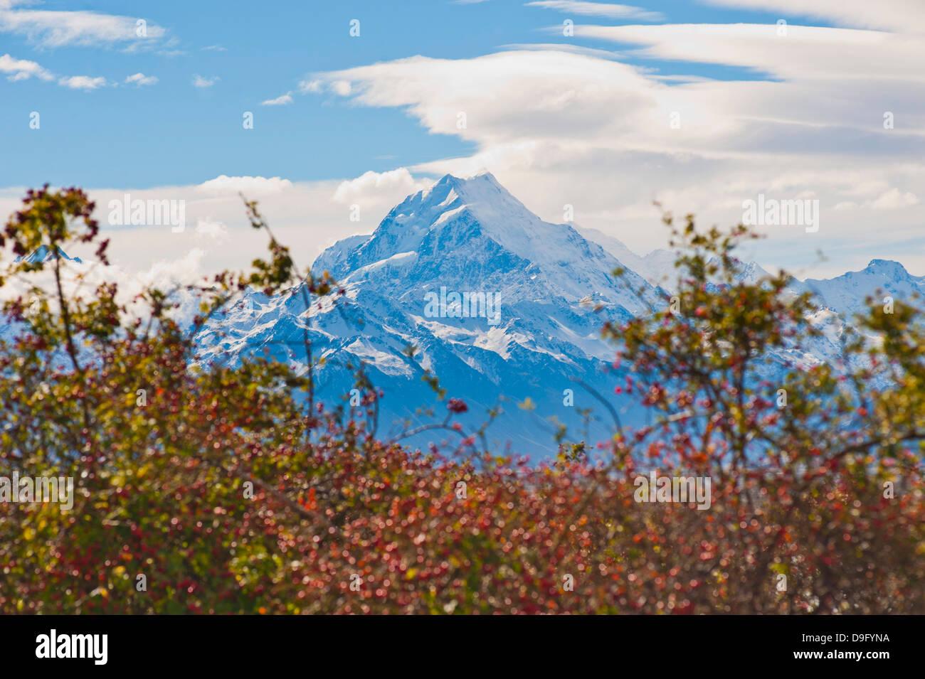 Mount Cook summit, Aoraki Mount Cook National Park, UNESCO World Heritage Site, South Island, New Zealand - Stock Image