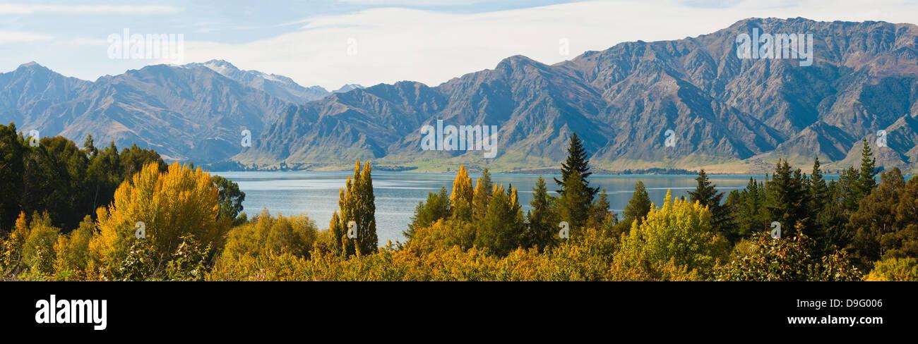 Autumn trees at Lake Hawea, West Coast, South Island, New Zealand - Stock Image