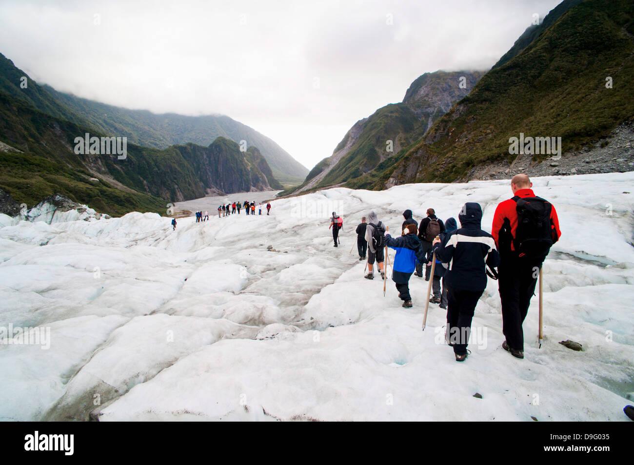 Tourists on Fox Glacier, Westland National Park, UNESCO World Heritage Site, South Island, New Zealand - Stock Image
