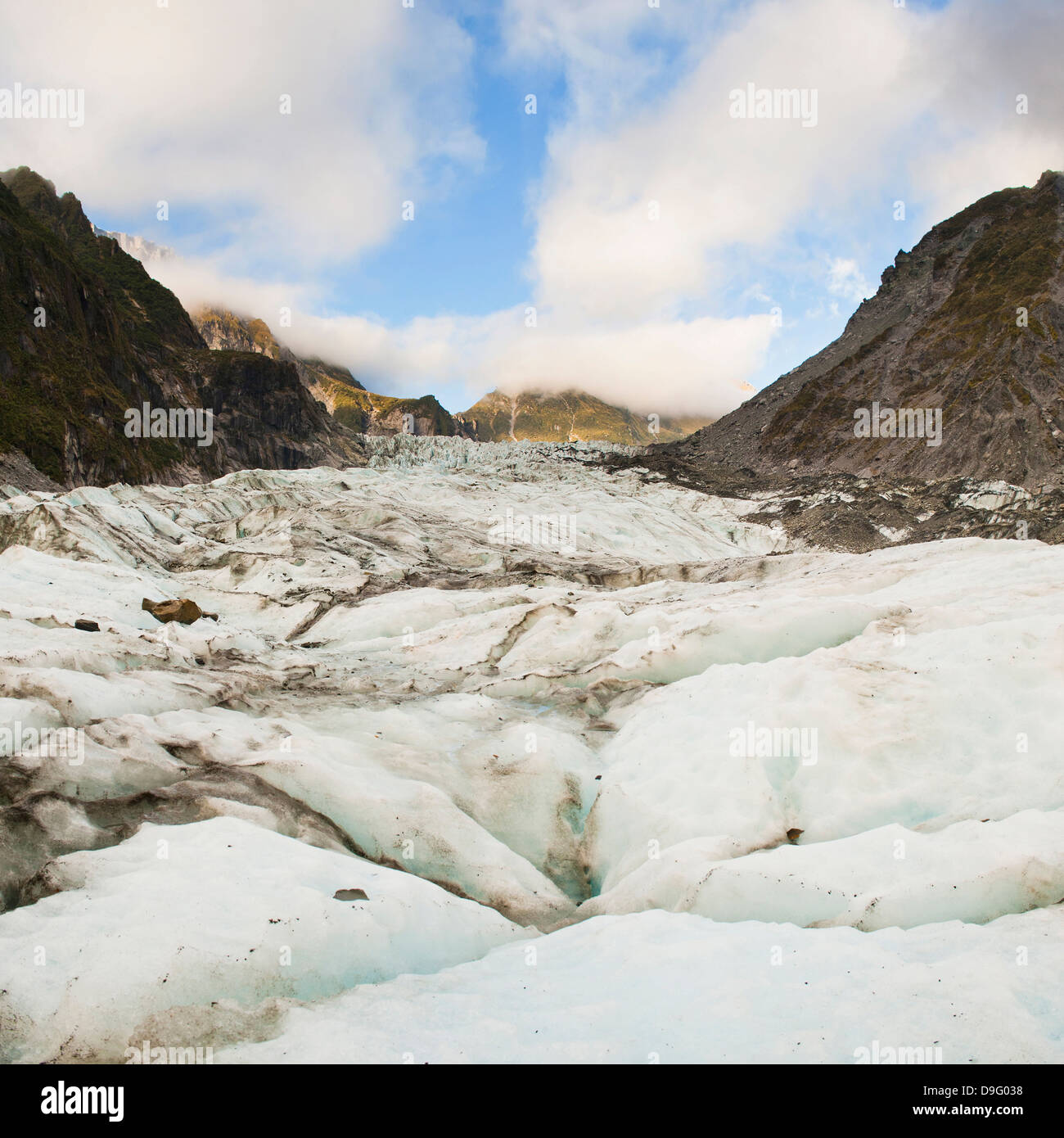 Fox Glacier, Westland National Park, UNESCO World Heritage Site, South Island, New Zealand - Stock Image
