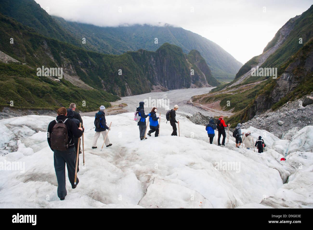 Tourists walking on Fox Glacier, Westland National Park, UNESCO World Heritage Site, South Island, New Zealand - Stock Image