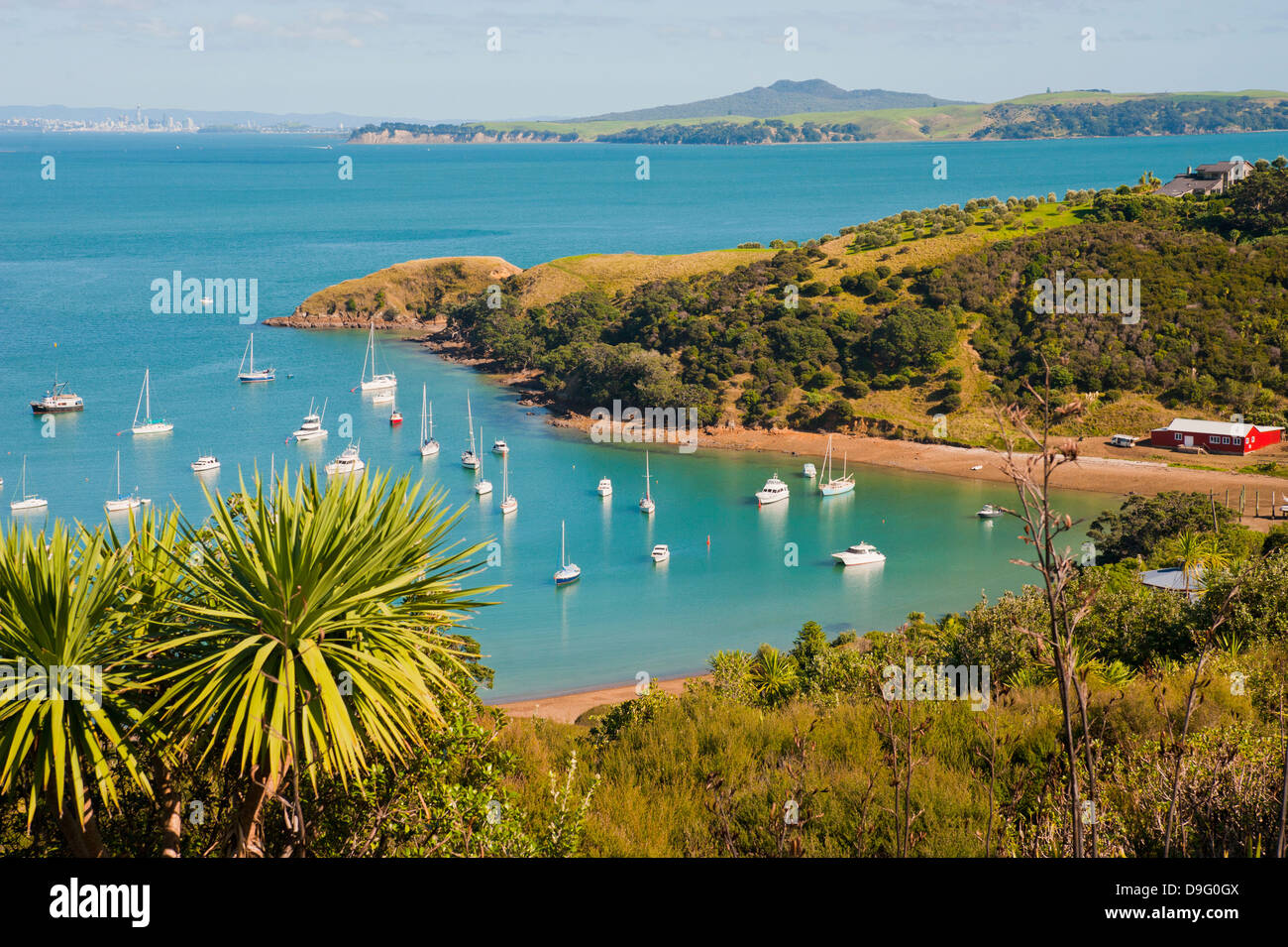Sailing boats on Waiheke Island, Auckland, North Island, New Zealand - Stock Image
