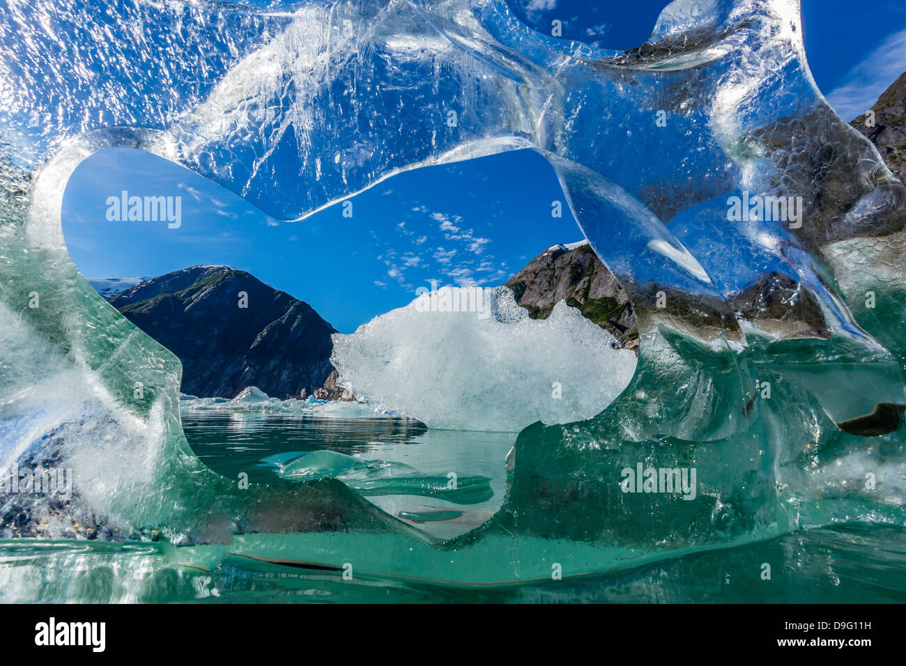 Glacial ice calved from the Sawyer Glacier, Williams Cove, Tracy Arm-Ford's Terror Wilderness Area, Southeast Alaska, Stock Photo