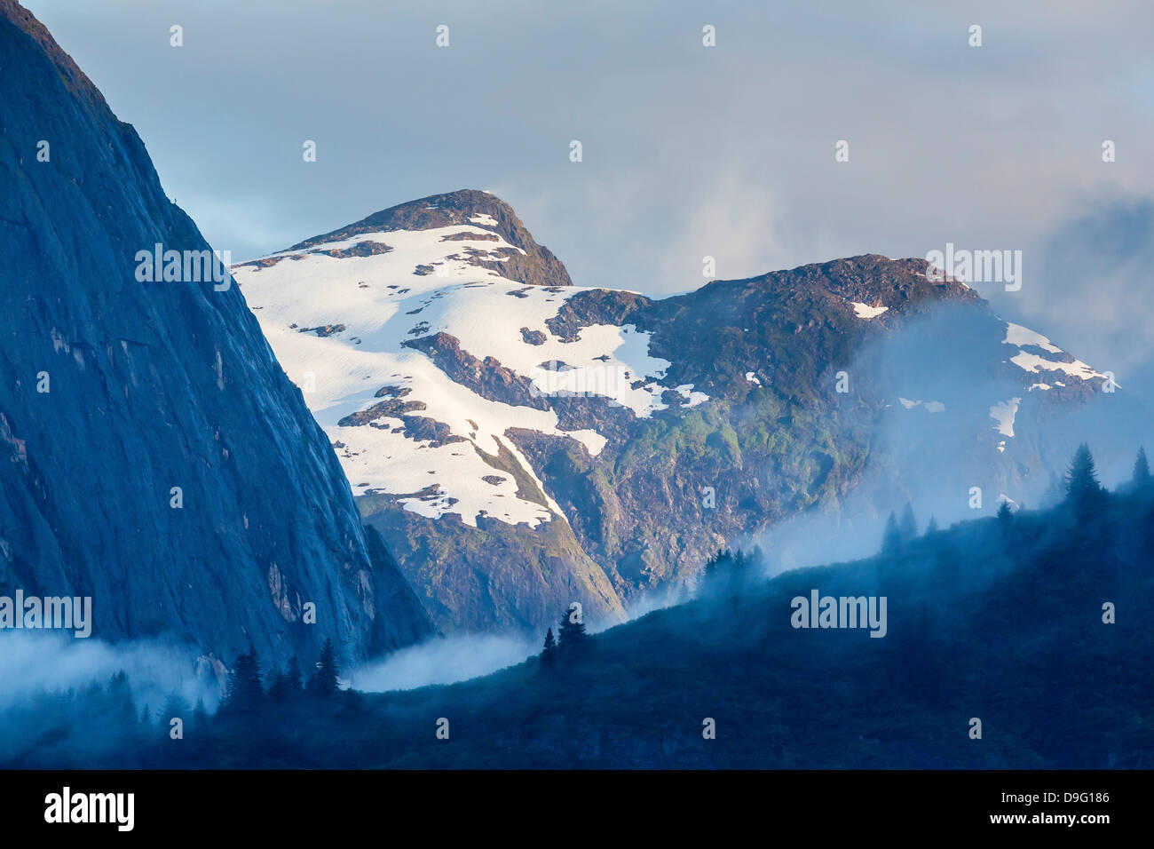Fog in trees in Tracy Arm-Ford's Terror Wilderness area, Southeast Alaska, USA - Stock Image