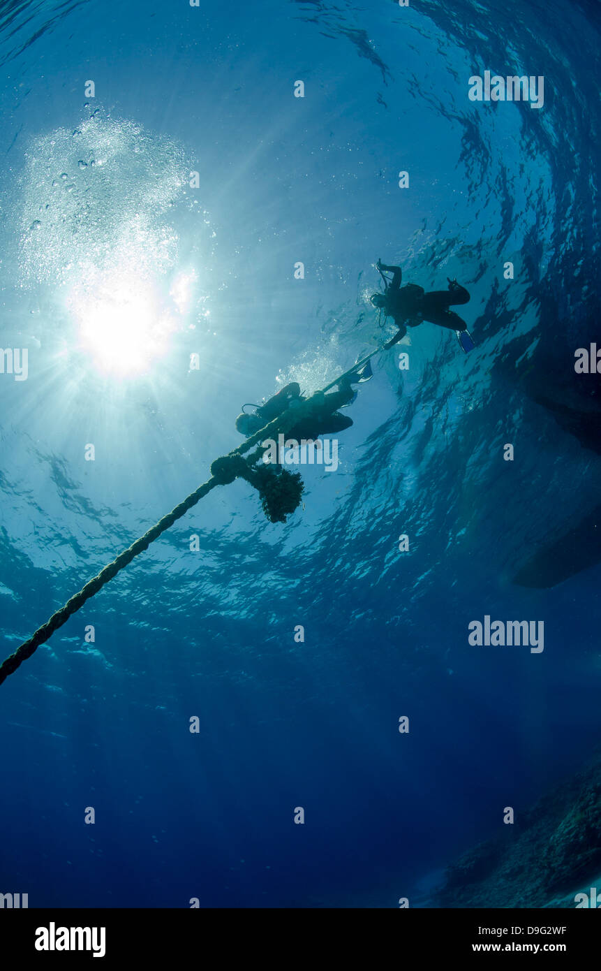 Two scuba divers descending down a line, part silhouette, low angle view, Ras Mohammed National Park, Red Sea, Egypt, - Stock Image