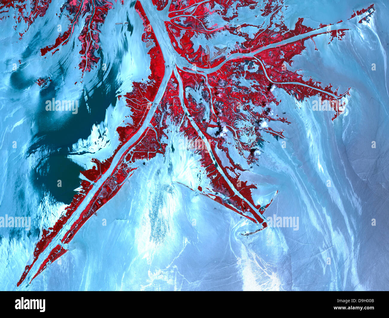 False color satellite view of the very tip of the Mississippi River Delta. - Stock Image
