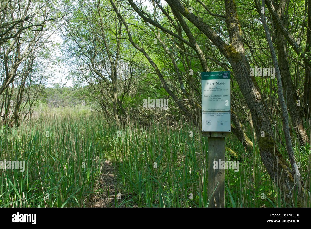 Sign at Hale Moss, a Cumbria Wildlife Trust nature reserve near Burton-in-Kendal, Cumbria, England UK - Stock Image