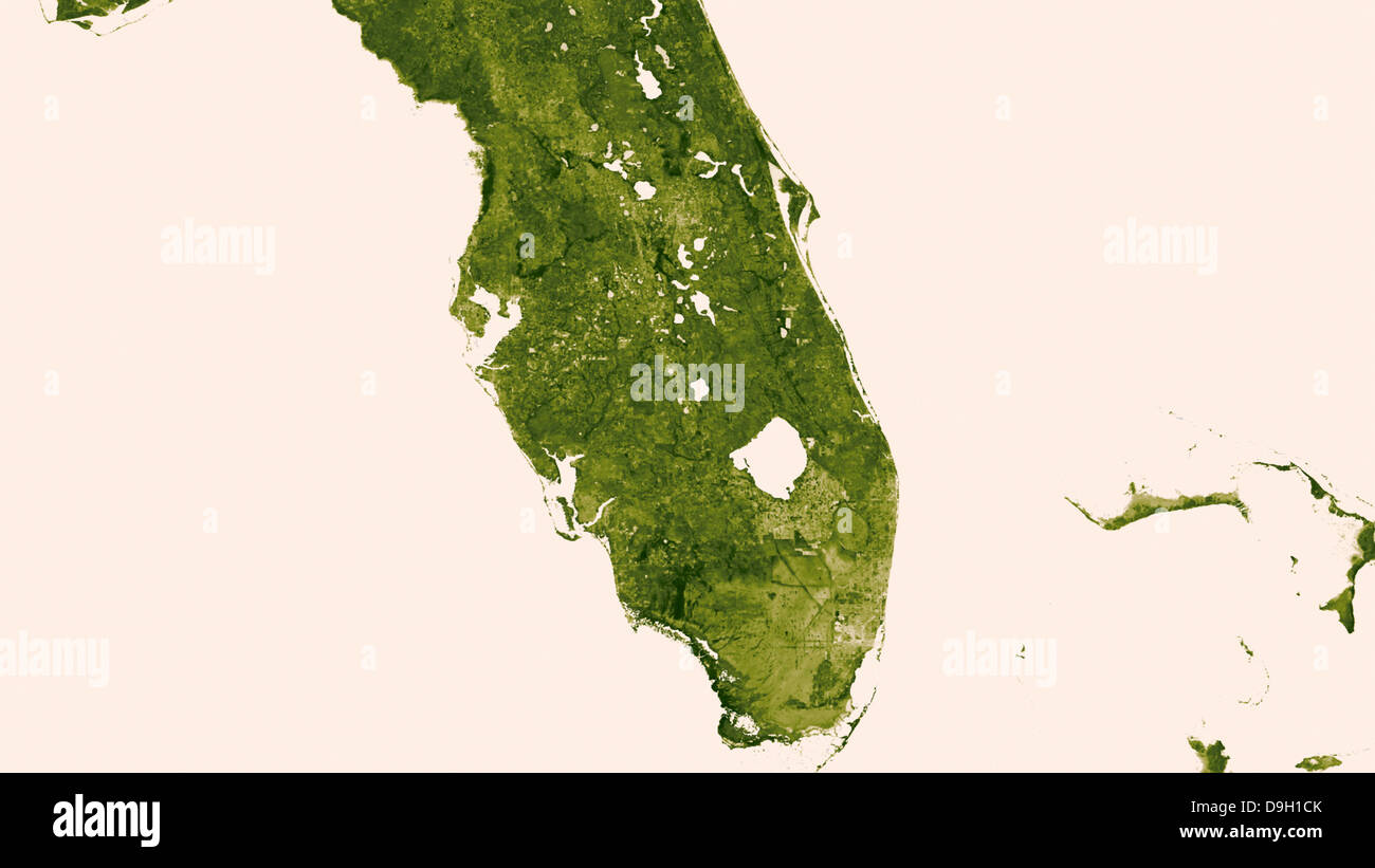 NASA image of Florida created from a years worth of data reflecting vegetation conditions worldwide using shades - Stock Image