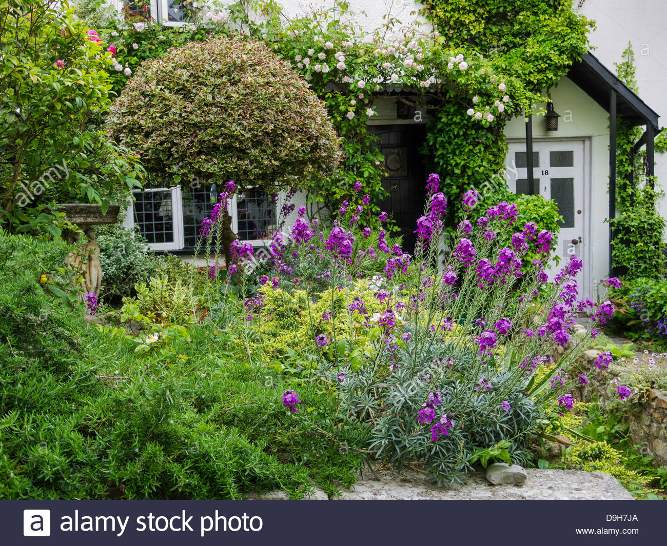 Lyme Regis Dorset England,Old Cottage ,Sherborne Lane,c774,Saxon King Cynewulf,Wessex - Stock Image