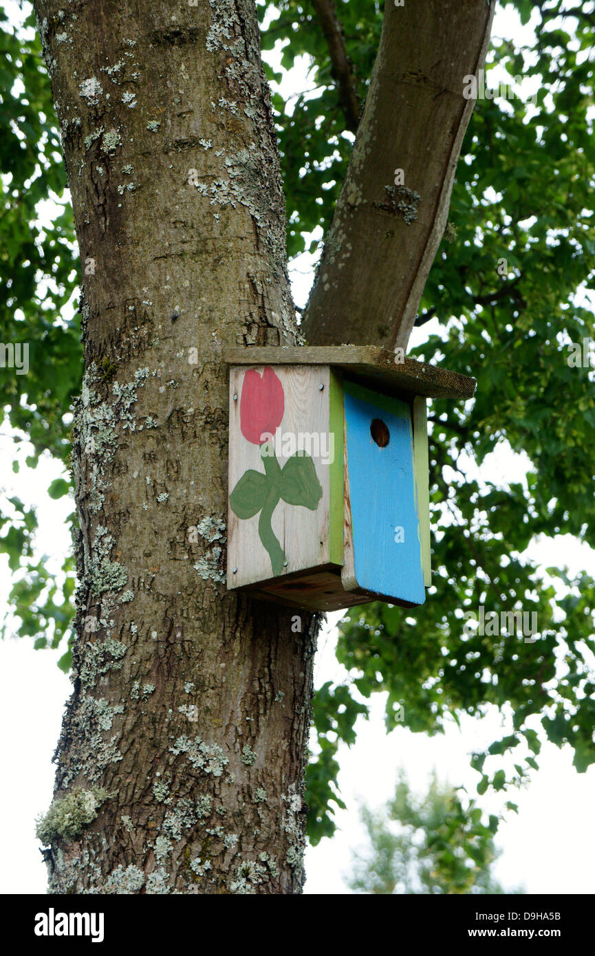 Handmade colorful painted birdhouse in a tree - Stock Image