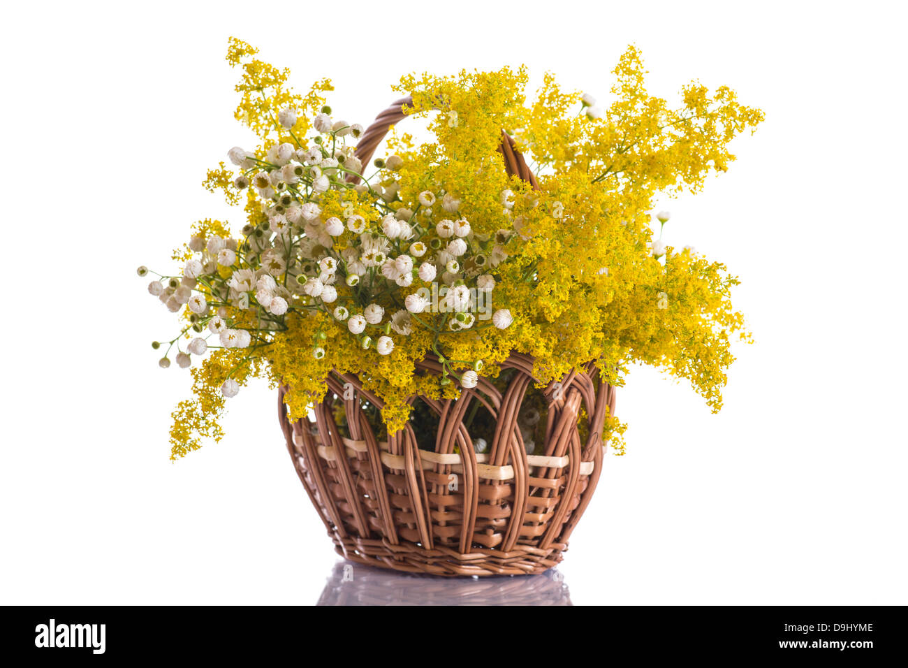 beautiful bouquet of summer flowers on a white background Stock Photo